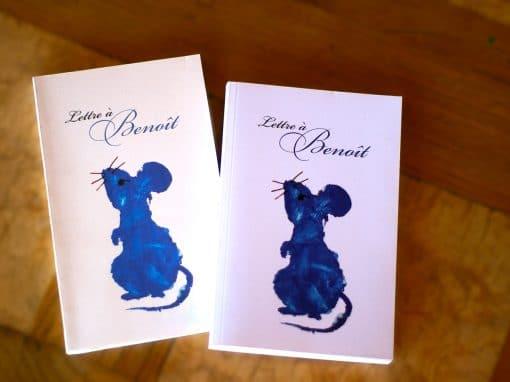 """Livre """"Lettre à Benoît"""""""